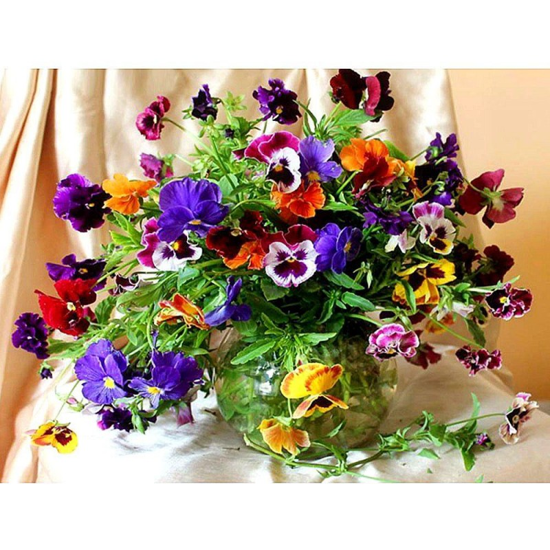 Colorful Flowers and...