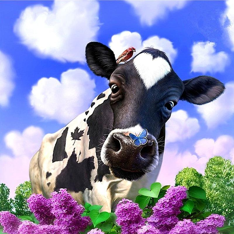 Sweet Cow And Blue S...