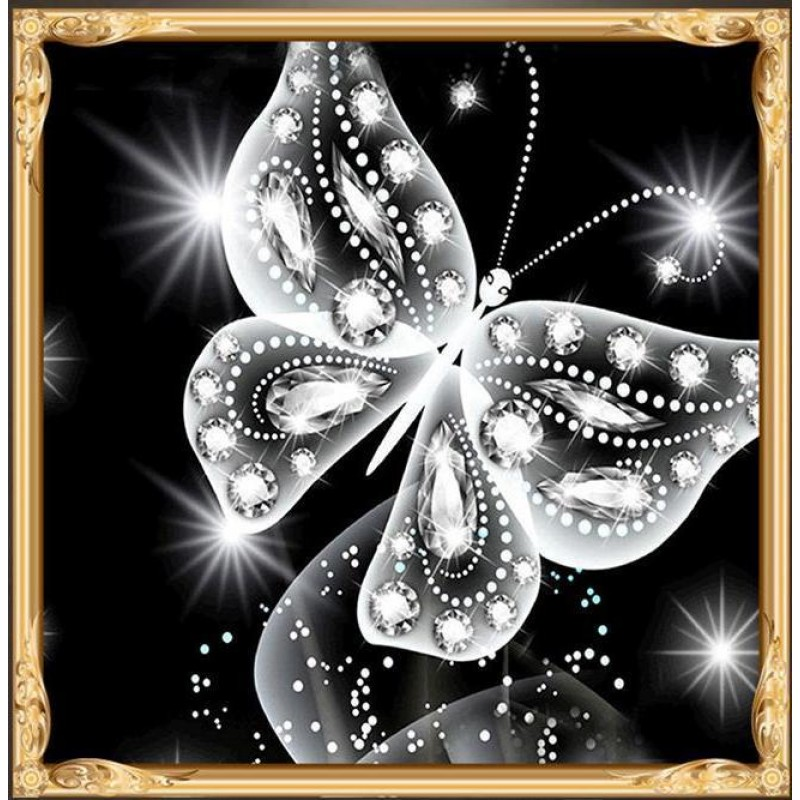 Butterfly Special Sh...