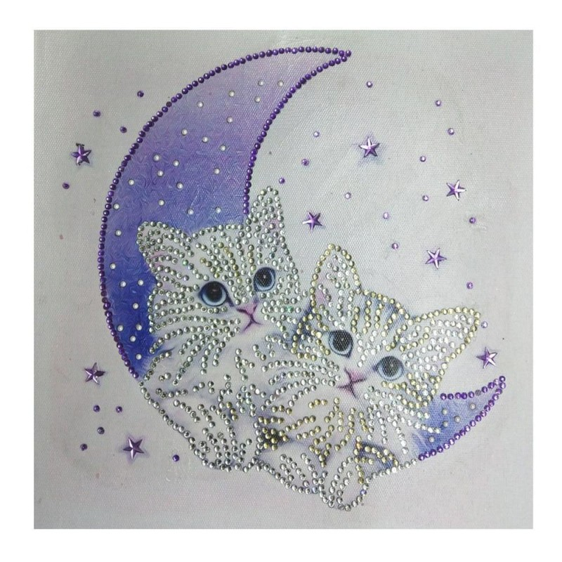 Special Shaped Cats Moon ...